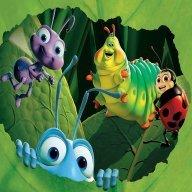 Zeckes Insektentrupp