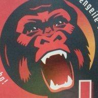Roter Gorilla